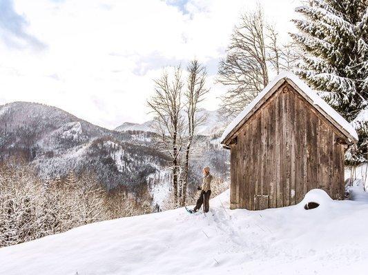 Schneeschuhwanderung in der Traunseeregion