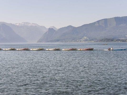 Elektroboote zur Vermietung am Ortsplatz von Traunkirchen