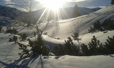 Traumhafte Winterlandschaften genießen